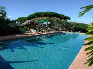 The Banyan Bed and Breakfast Retreat Pool - The Banyan Bed and Breakfast Retreat in Maui, HI - Makawao - rentals