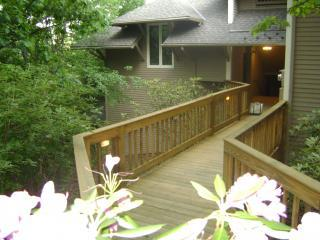 Mountaintop 2 or 3 K Master Suites, WiFi, Passes - Central Virginia vacation rentals