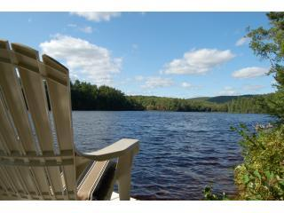 Relax on the dock! 37 acre lake, 38ft deep - Welcome to our Vacation Lake House at Black Pond - Vienna - rentals