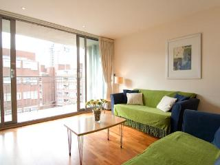 The Waterloo West 2 Bedroom 2 Bathroom Apartment - London vacation rentals