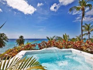 Reeds House no1 - Luxury condo with direct access to white sandy beach & 2 spa pools - Reeds Bay vacation rentals