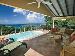Ylang-Ylang - Charming luxury home with tropical surroundings, pool & beach activities nearby - Saint John vacation rentals