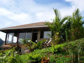 Bird Song Arenal Villa - Amazing Volcano Views - El Castillo vacation rentals