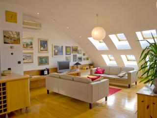 Luxurious two floor penthouse with private parking - Zagreb vacation rentals