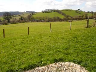 cottage patio view.JPG - Rowan Cottage in Aish,Devon, overlooks Dart Valley - Stoke Gabriel - rentals