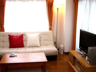 Pocket Wi-Fi !!  Luxury 2BR Apartment in Tokyo! - Tokyo vacation rentals