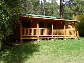 Hummingbird Cabin on the Pecos - New Mexico vacation rentals