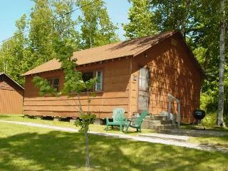 MN Northwoods Fishing Cabin on the Lake #10 - Deer River vacation rentals