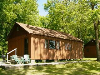 Simplistic Cabin on the Lake #2 - Deer River vacation rentals