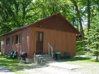 Cabin Fever, Waterfront Central #5 - Deer River vacation rentals