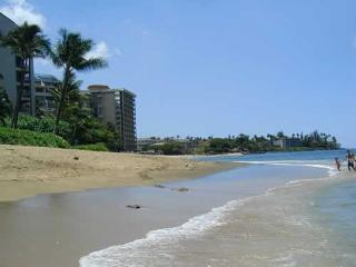 RIGHT ON KAHANA BEACH! - Kahana vacation rentals