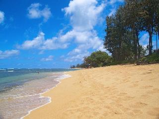 Kauai Oceanfront condo for rent - over 100 reviews - Kapaa vacation rentals