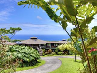 Ekena-  breathtaking panoramic views! - Hana vacation rentals