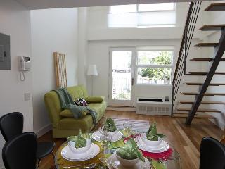 New Unique Designer Duplex Condo - Brooklyn vacation rentals