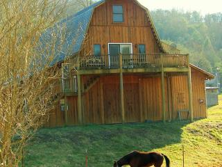 Country Manor's Hay Loft Sky Cabin - Free Fishing - Townsend vacation rentals