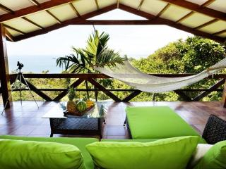 Villa Mot Mot - Ocean Views, Wildlife & Beach - Manuel Antonio vacation rentals