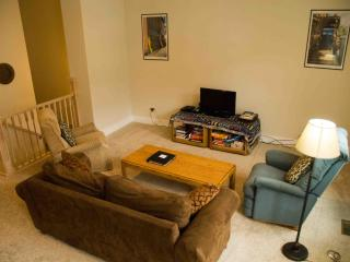 Family Flat in South Main, on the River Park - South Central Colorado vacation rentals