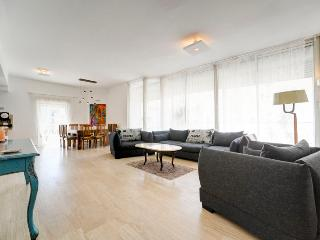 Best Location  Luxurious 3BR Penthouse W/Parking - Tel Aviv vacation rentals