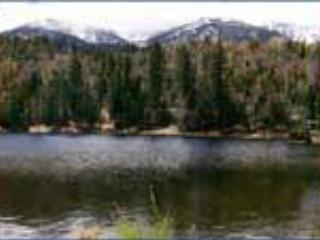 Big Bear Lake - Beautiful Condo Rental in Big Bear, CA - Big Bear Lake - rentals