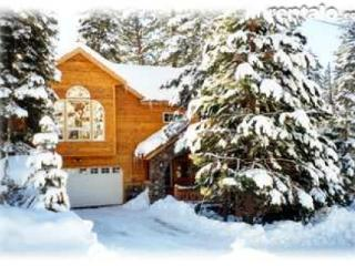 Charming Lake Tahoe Home 4 bdrms, near sandy beach - North Tahoe vacation rentals