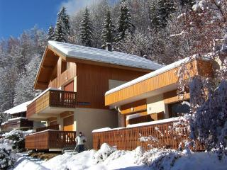 Lovely 3 bedroom apartment in Champagny en Vanoise - Champagny-en-Vanoise vacation rentals