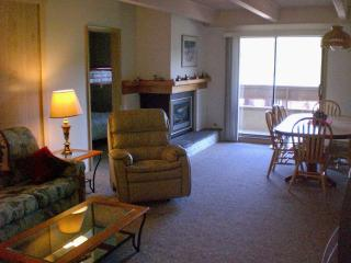 Large Family Condo Sleeps 7-9 - Breckenridge vacation rentals