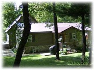 329-Life's A Bear - McHenry vacation rentals