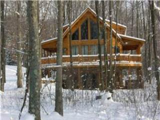 742-Dancing Leaf Lodge - McHenry vacation rentals