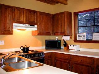 Twining 5 - New Mexico vacation rentals