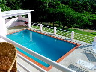 Mimosa House Penthouse Level - Vieques vacation rentals