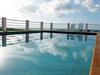 Mimosa House Pool Level - Vieques vacation rentals
