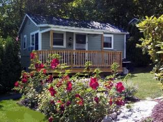 Cozy Inn-Lakeview House & Cottages - Weirs Beach - Lakes Region vacation rentals