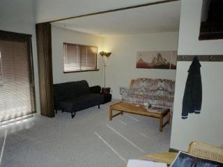 Mammoth View Villas, Near Village, Low Rates - Dillon vacation rentals