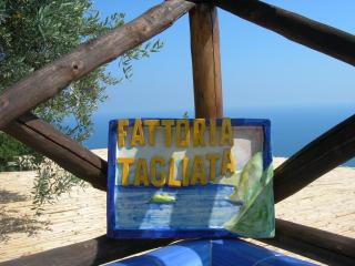 AUGUST DEAL 2 DINNERS, BREAKFAST,PARKING - Positano vacation rentals