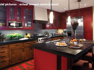 One Steamboat Place - Trickle Creek Residence - Steamboat Springs vacation rentals