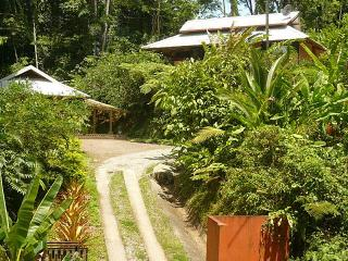 OceanView-Beach 300yds-Comfort in the Rainforest ! - Limon vacation rentals