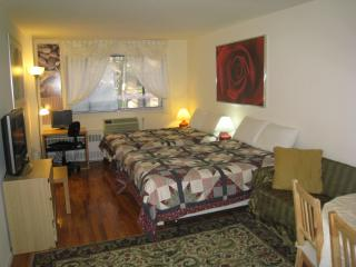 Quality Location Price - Sleep 5 at the Chelsea 1 - Manhattan vacation rentals