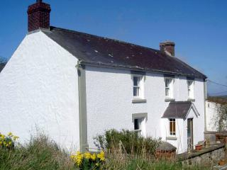 Large farmhouse close to Newport beach & coast - Pembrokeshire vacation rentals