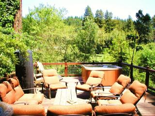 Riverfront Luxury. 4 Double Kayaks, Dock, Spa, 4FP - California Wine Country vacation rentals