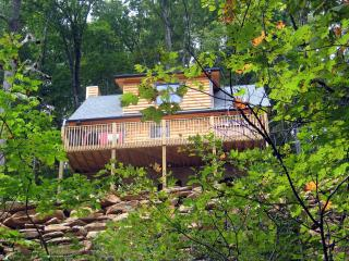 Black Beary Cabin - Hendersonville vacation rentals
