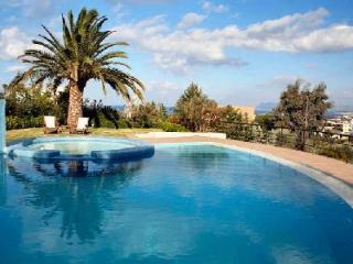 Space and comfort at Villa Joy minutes from heart of town & sandy beach with pool and housekeeping - Crete vacation rentals