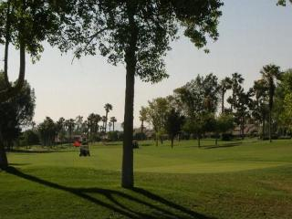 Tropical Paradise Awaits You - Property ID 41530 W - Palm Desert vacation rentals