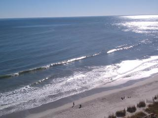 Your Tropical Vacation Adventure is Waiting... - North Myrtle Beach vacation rentals