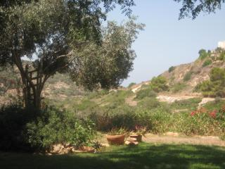 Holiday House by the Nature Reserve (B&B Optional) - Israel vacation rentals