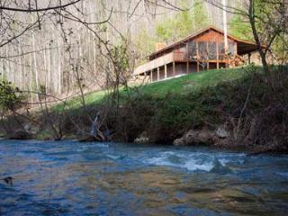 Creek View Cabin, A Cozy Peaceful Mountain Retreat - Hot Springs vacation rentals