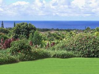 Oceanview 4 Bedroom House on 3 Acres Near Beaches - Hana vacation rentals
