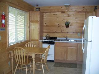 Northern Lights Suites - Ely vacation rentals