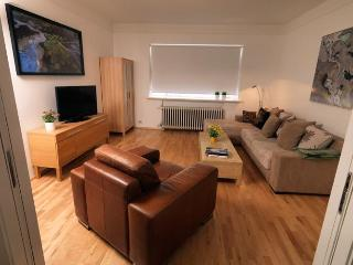 Bright,Beautiful and Spacious - Reykjavik vacation rentals