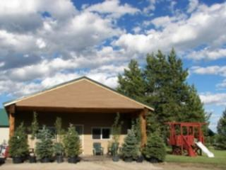 ENCHANTED FOREST CABIN ~ 4 BEDROOMS - Image 1 - Island Park - rentals