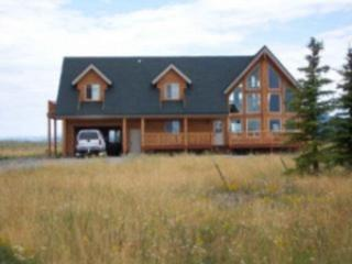 SCOTT'S LAKEVIEW CABIN ~ 4 BEDROOMS - Island Park vacation rentals